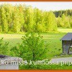Savupiipun kunnostus | Suomen Hormimiehet Oy | Jyväskylä, Tampere, Keski-Suomi
